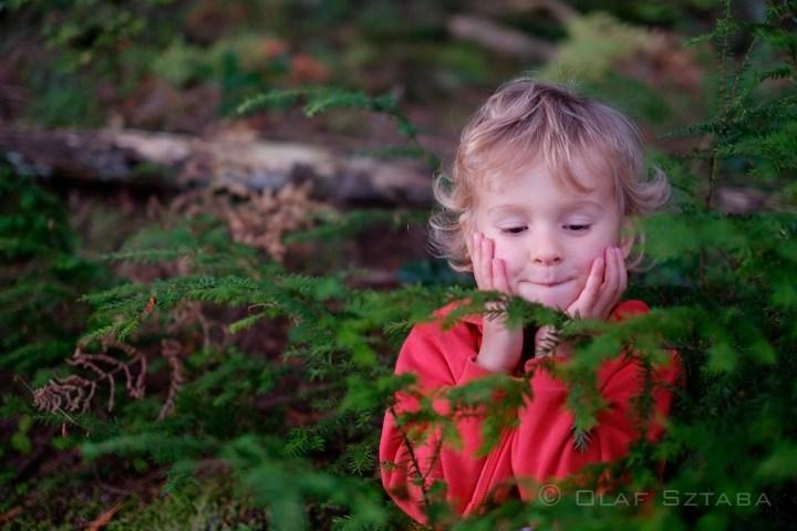 ©osztaba_forest_20131027__DSF0260