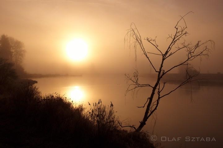 ©osztaba_pitt_meadows_ID_20140121__DSF2252