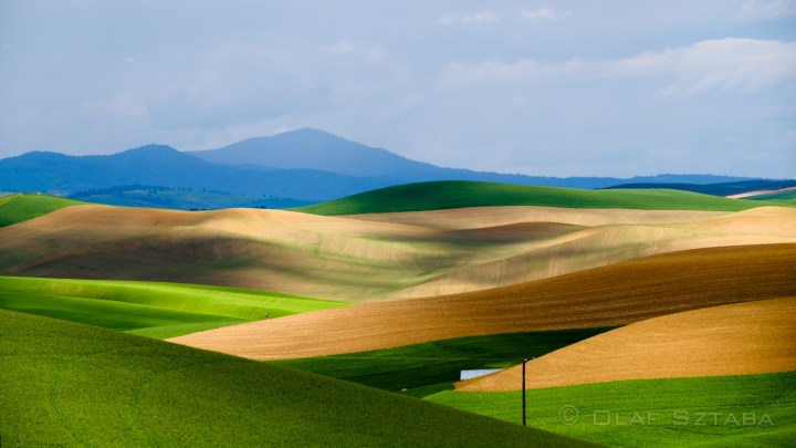 Fifty Shades (and Colours) of Palouse