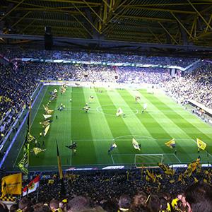 bvb football allemagne image
