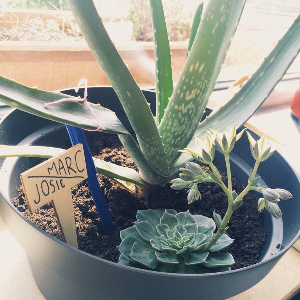 gardening mama marc appartement olamelama image