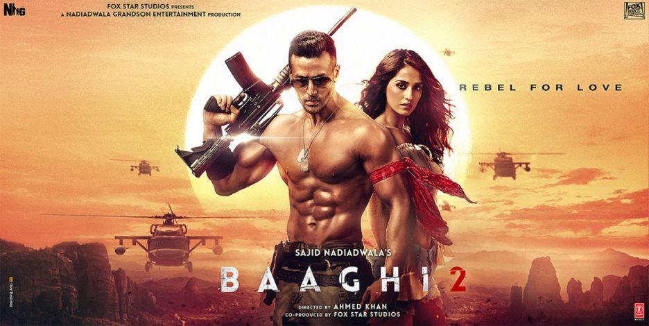 Baaghi 2 (2018) Bluray Google Drive Download