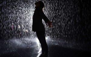 US-ART-RAIN ROOM