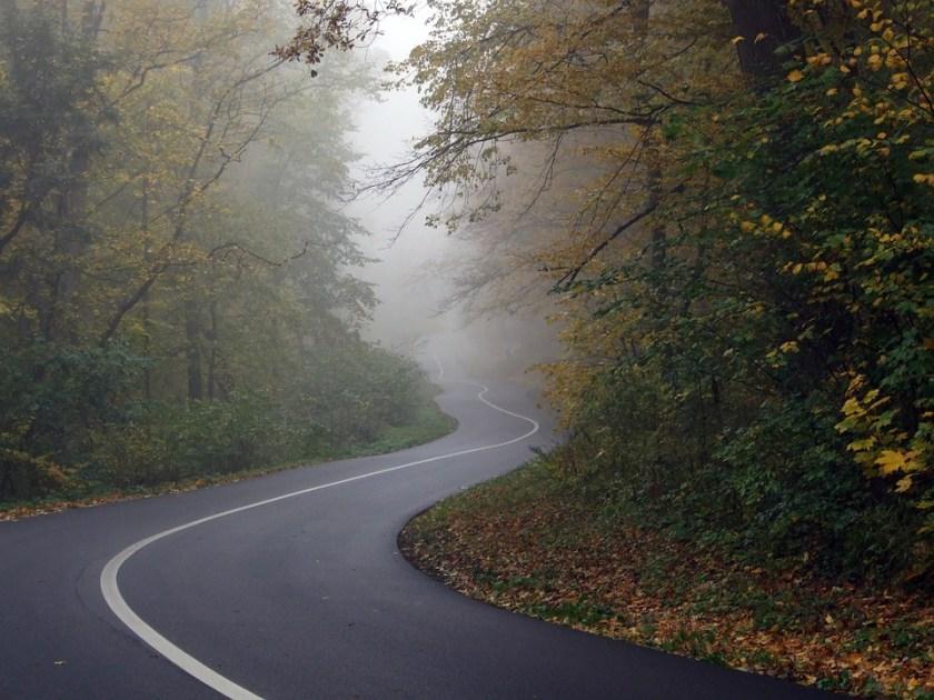 road-564492_960_720