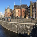 Sausiausia kada nors buvusi liepa Nyderlanduose
