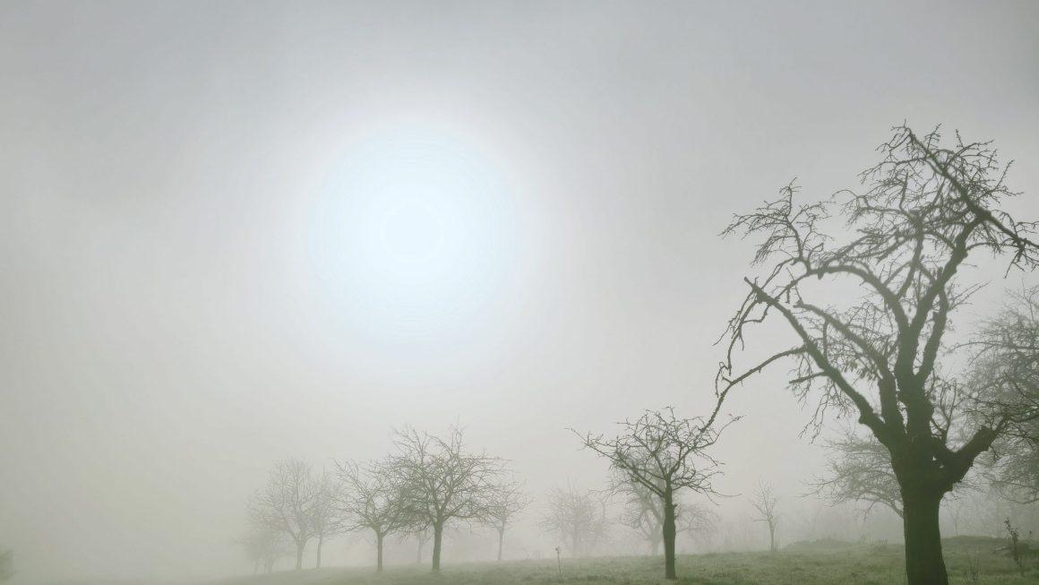 Gespenstergrau. Ein November Tagebuch
