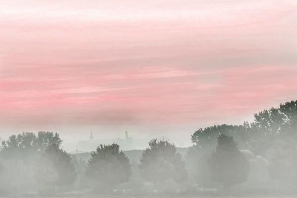 Nebeldämmerung