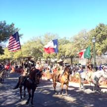 'Horses on Parade'