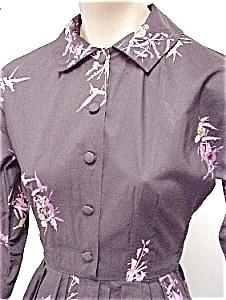 bird print shirtdress
