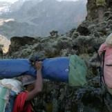 Kilimanjaro_287