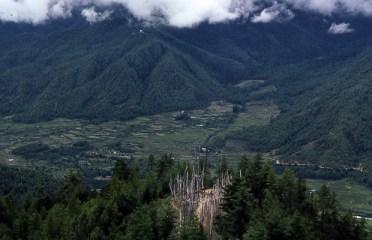 Veduta della fertile Valle di Paro