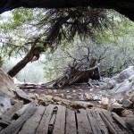 """Day3: La grotta """"della strega"""" nelle vicinanze del punto acqua"""