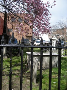 fence and cemetery
