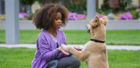 Watch This: New Trailer for Annie