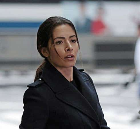 Sarah Shahi in Person of Interest