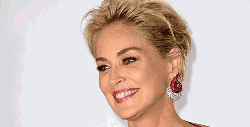 Sharon Stone will star in Agent X on TNT