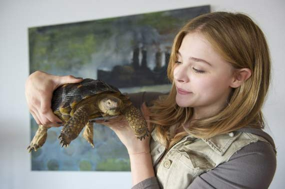 Chloe Grace Moretz in Laggies