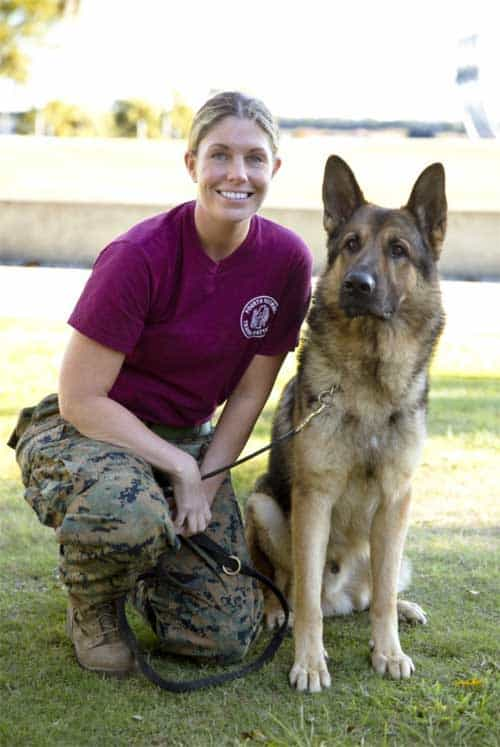 Megan Leavey in Megan Leavey