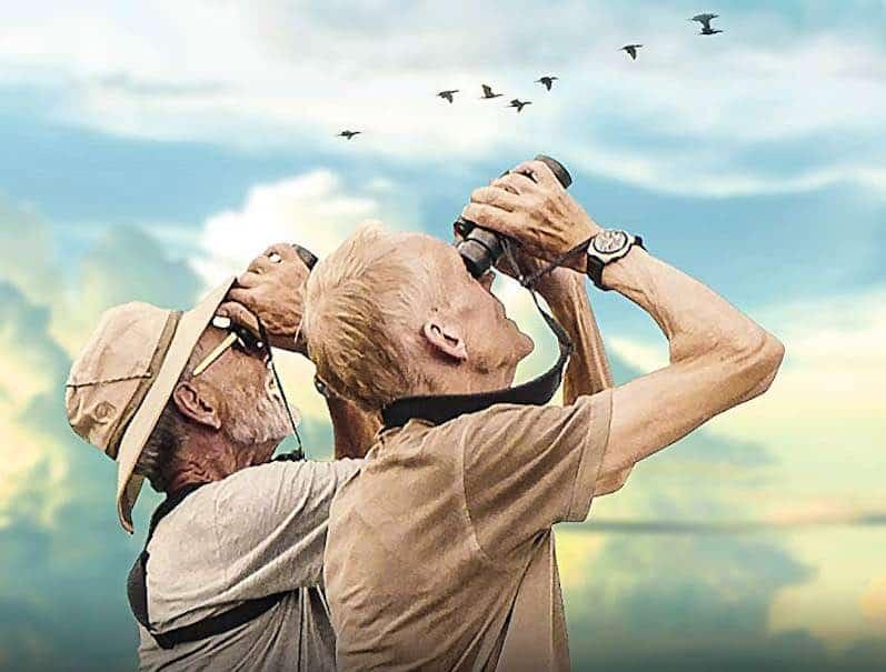 Review: Birders