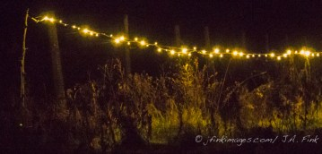 light in the night, karme choling Vermont