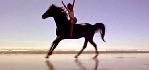 Końskie filmy - Czarny rumak