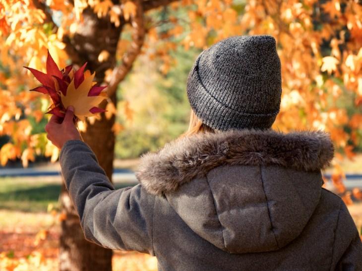 Bright Autumn--180