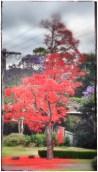 Photo 28-10-2013 18 10 24 (3)