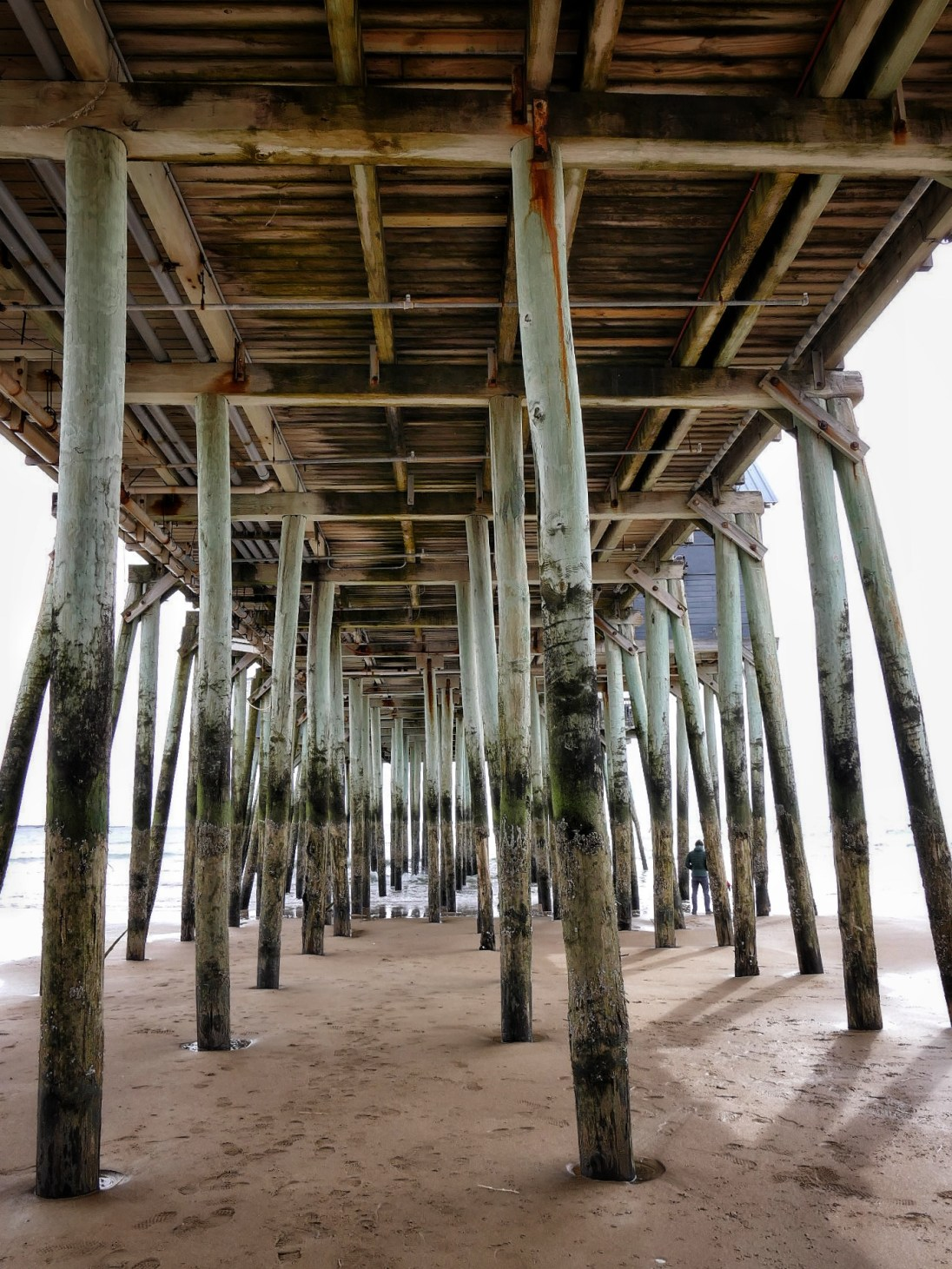 the underside of a large wooden pier at low tide