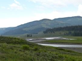 river plain