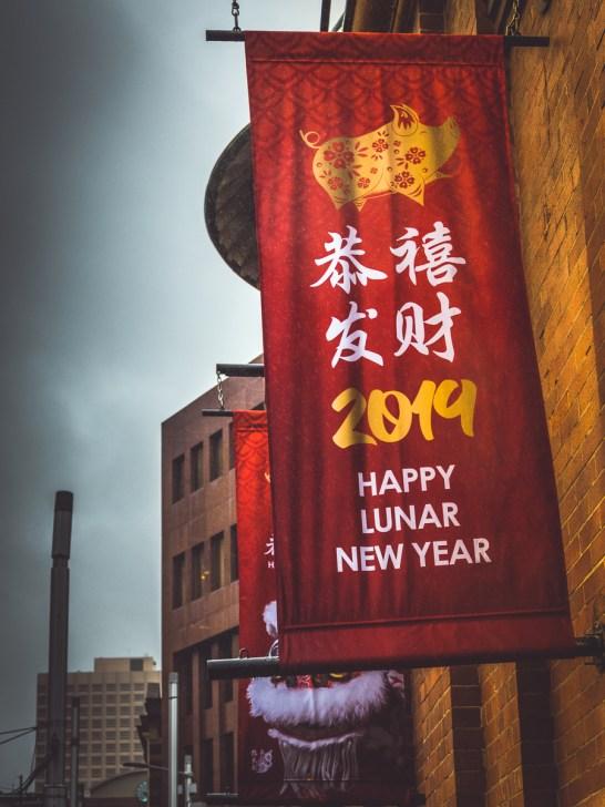 Lunar New Year 2019P1780375