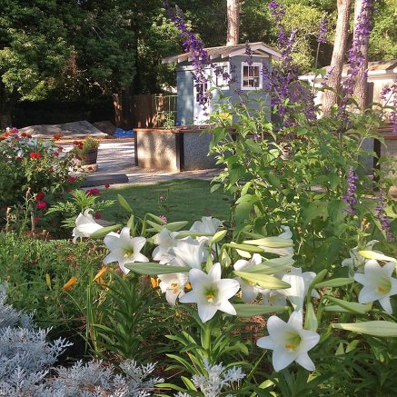 community-garden-5