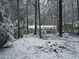 Swing seat by my neighbors pond