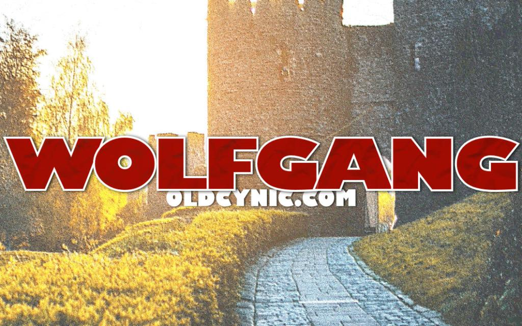 Wolfgang Clash Of Knights