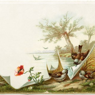 Birds/Scenic Victorian Trading Card