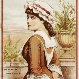 Victorian Trading Card ~ Broadhead Dress Goods