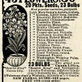 vintage magazine ad, seed packets advert, antique advertisement, flower seeds ad