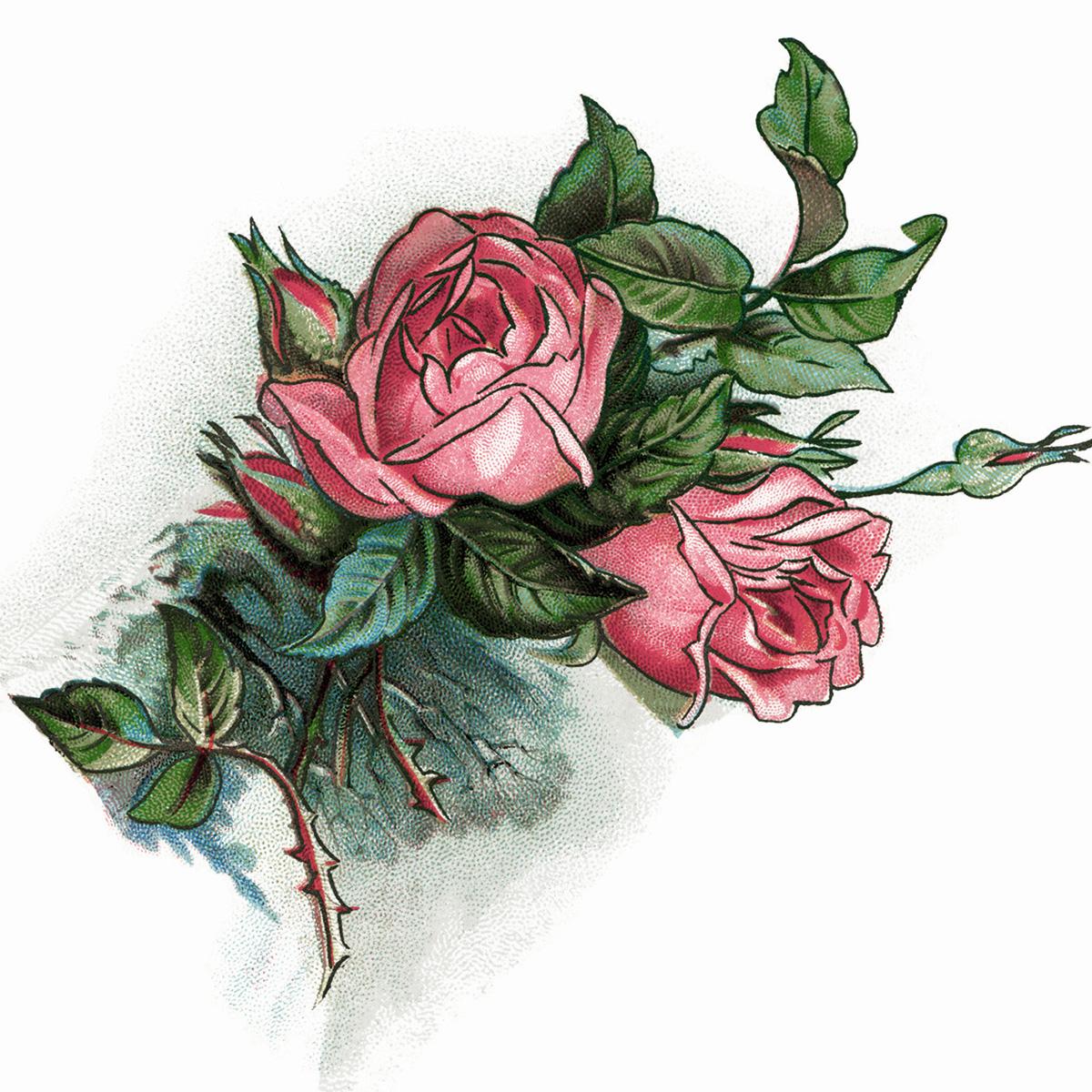 Pink Roses And Poem Vintage Clip Art