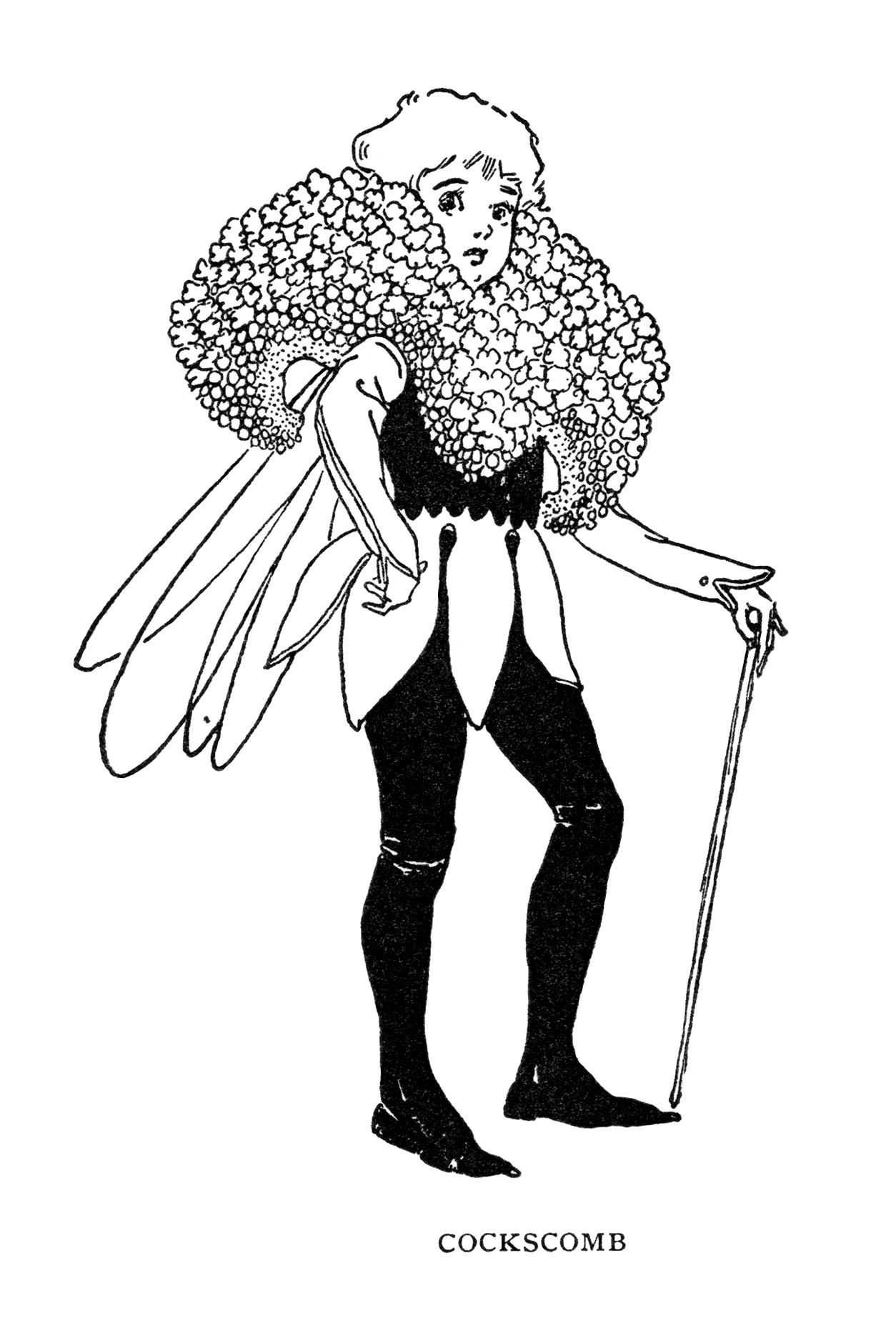 Cockscomb Storybook Character