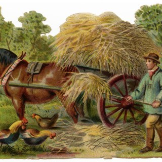 Victorian Farmer at Work