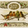 vintage bird clipart, john winsch postcard, antique new year wish, birds on branch image, old fashioned holiday card