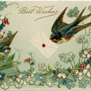 Vintage Birds and Flowers Postcard ~ Free Download