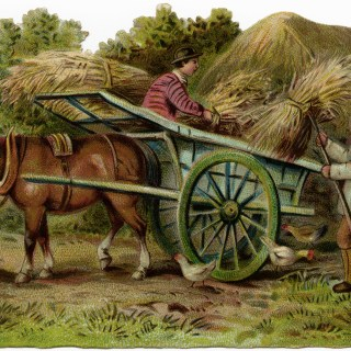 Victorian Farmers Loading Hay