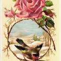 Victorian rose bird card, vintage rose clip art, vintage bird graphic, pink rose illustration, old fashioned card digital