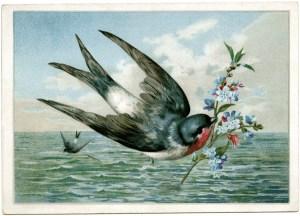 vintage bird clip art, bird carrying branch, printable bird card, bird flying over water illustration, free vintage ephemera graphics