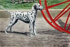 louis agassiz fuertes, dalmation illustration, vintage dog clip art, dog with black spots white coat, fire dog image
