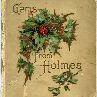 Shabby Book Cover Holly and Berries