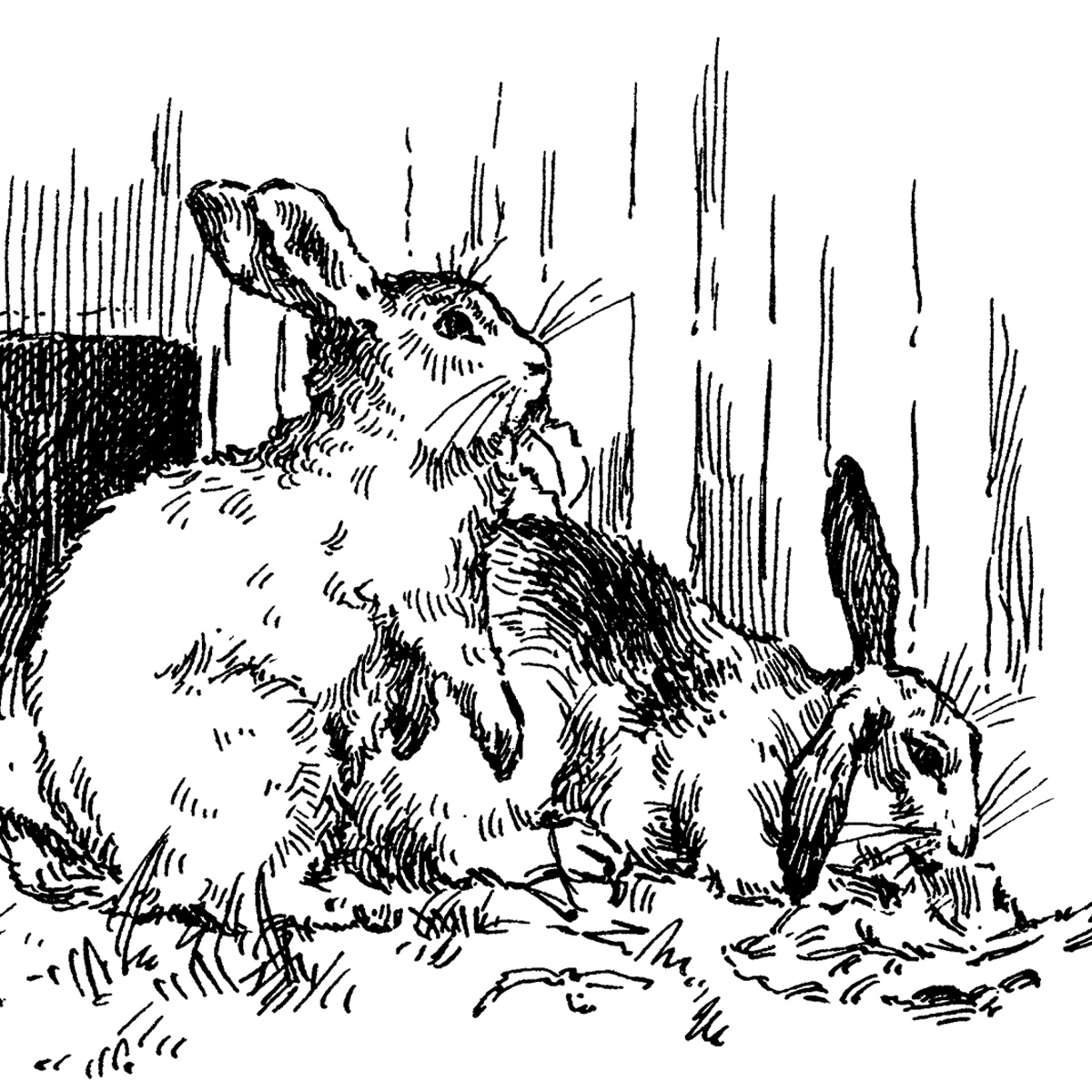Free Vintage Clip Art Bunny Rabbits