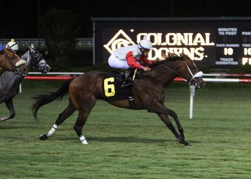BOLTIN'_OUT_The_14th_Running_of_the_Punch_Line_Stakes_07-06-13_CNL_Action_Finish