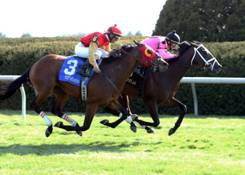 JACK MILTON (inside) and REDWOOD KITTEN in the Transylvania Stakes Gr.3 (Keeneland/Coady Photography)