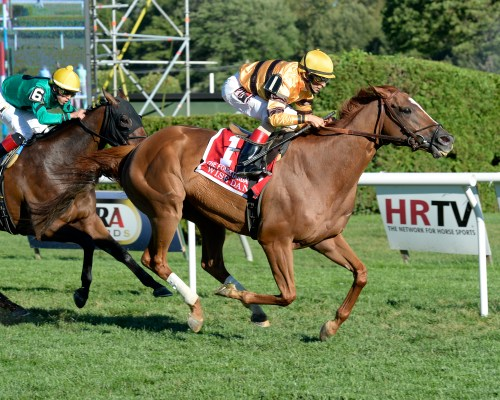 wise dan the fourstardave 2013